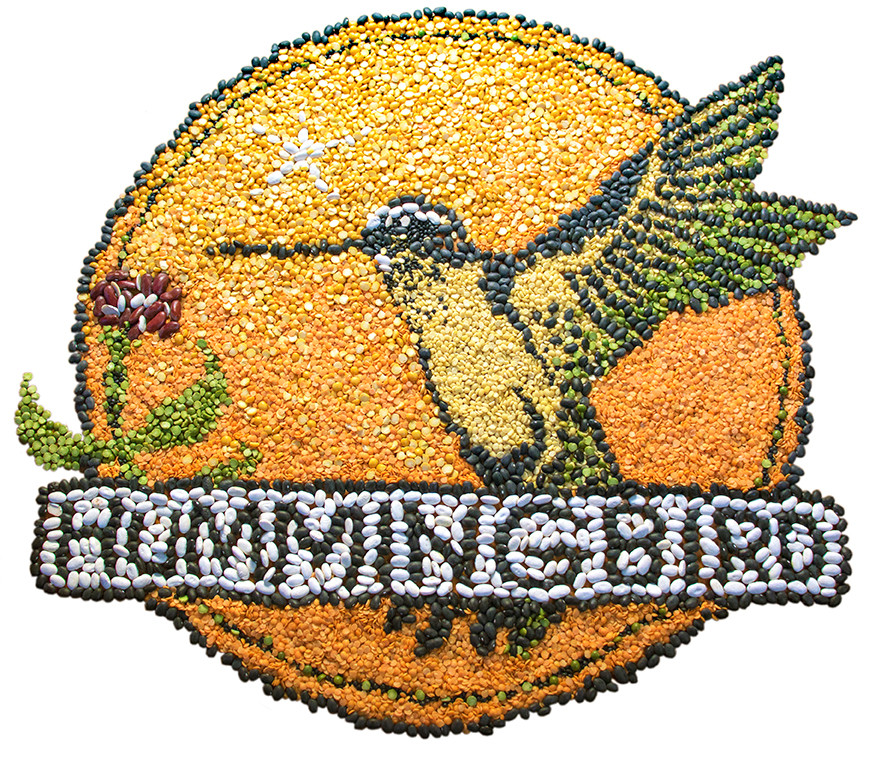Humminbird Wholesale