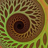 SwirlyEye.jpg