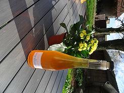 Vinaigre de cidre naturel du Vexin Normand entre Vernon et Gisors