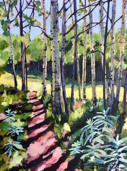 Painterboy Trail