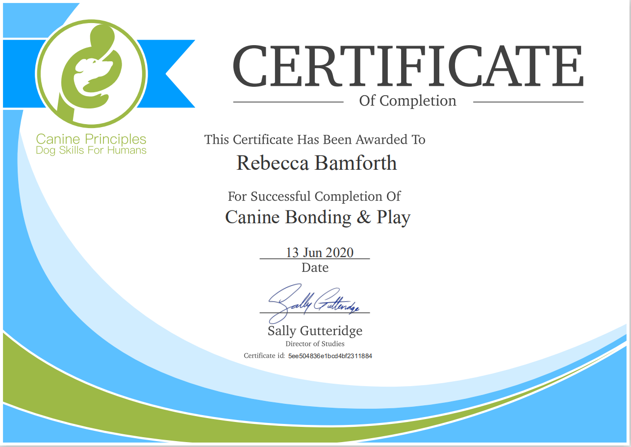 Certificate Canine Play