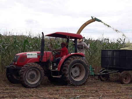 Prefeitura de Brasileia executa Plano Agrícola Municipal beneficiando produtores rurais do município