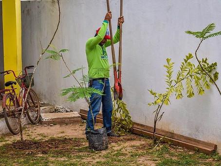 Prefeitura de Brasileia realiza programação sustentável na Semana do Meio Ambiente