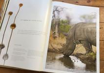 Singita Book 1.jpg