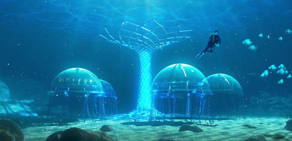 orto-di-nemo-orto-subacqueo-0