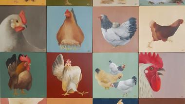 Chicken Run - the flock