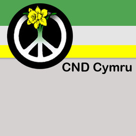 C N D Cymru campaigns side by side with a host of  other movements in Wales and worldwide to rid Britain and the world of all weapons of mass destruction, for peace and for human and social and environmental justice.