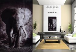 Elefante IV