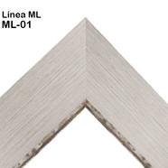 ML-01