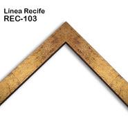 REC-103