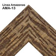 AMA-13