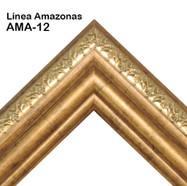 AMA-12