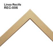 REC-006