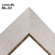 ML-02