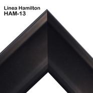 HAM-13