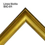SIC-01