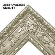 AMA-17