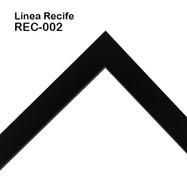 REC-002