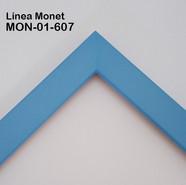 MON-01-607
