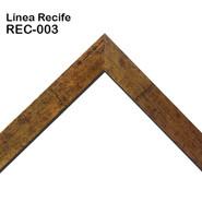 REC-003