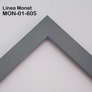 MON-01-605