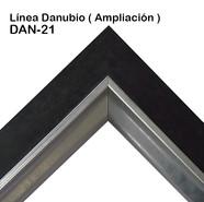 DAN-21