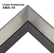 AMA-19