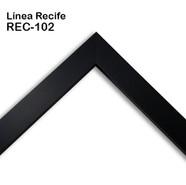 REC-102