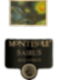 SAIRUS label.png