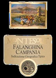FALANGHINA CAMPANIA label.png