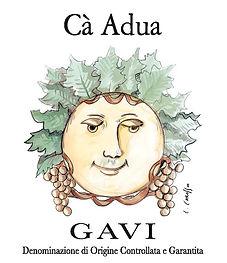 CA ADUA GAVI.jpg