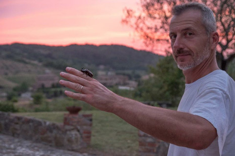 @ Estate Ortaglia with a stunning sunset and a rhino bug