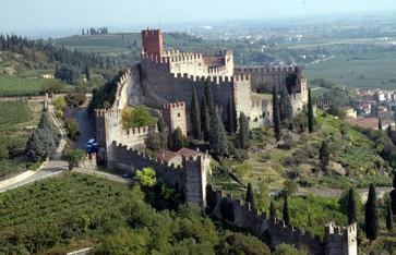 castello_aerea_da_nord_lib.jpg