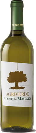 PDM TREBBIANO.png