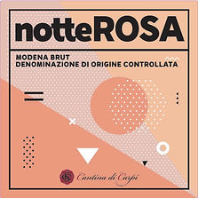 NotteRosa2_F.jpg