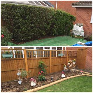 hedge removal trowbridge
