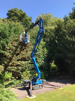 Hedge trimming from spider lift
