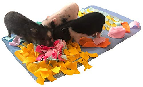 "Pig Activity Rooting Mat - 29"" x 18"""
