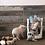 Thumbnail: Pig Activity Game & Slow Feeder