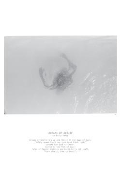 05.Untd, TEXT: Dreams Of Desire