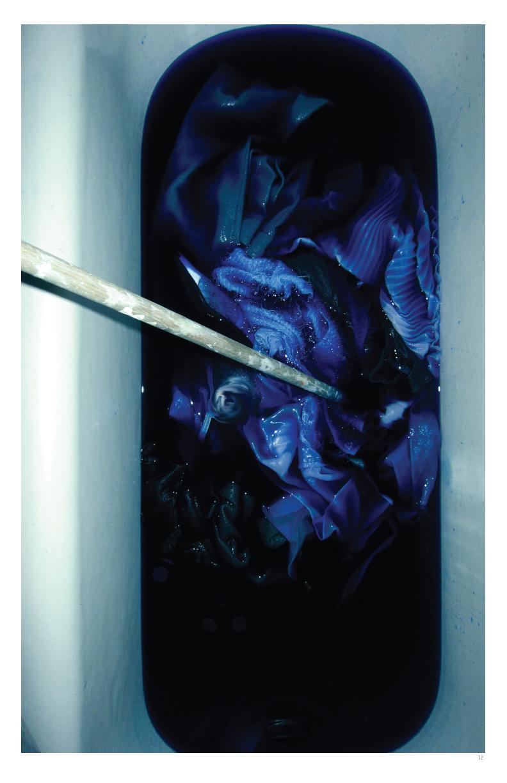 Blue Stem #1