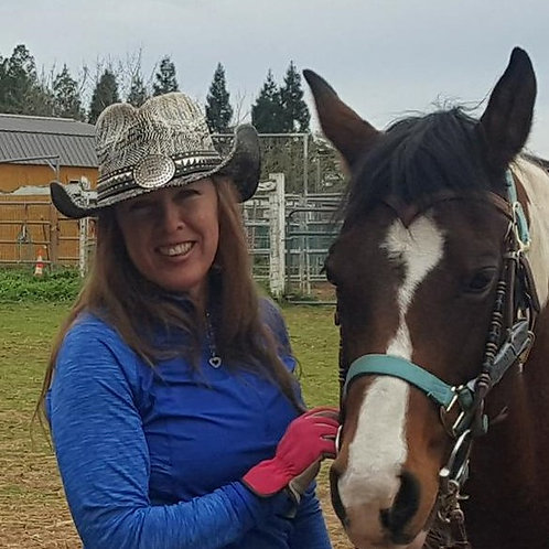 12 WEEKS: Horse Training Lessons