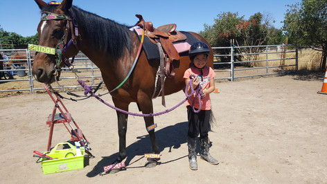 Roxie during lessons with Annabelle
