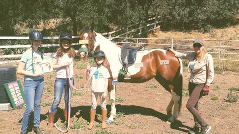 Rain the lesson horse
