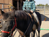 Great Outdoor Fun with Healing Hands Horsemanship!