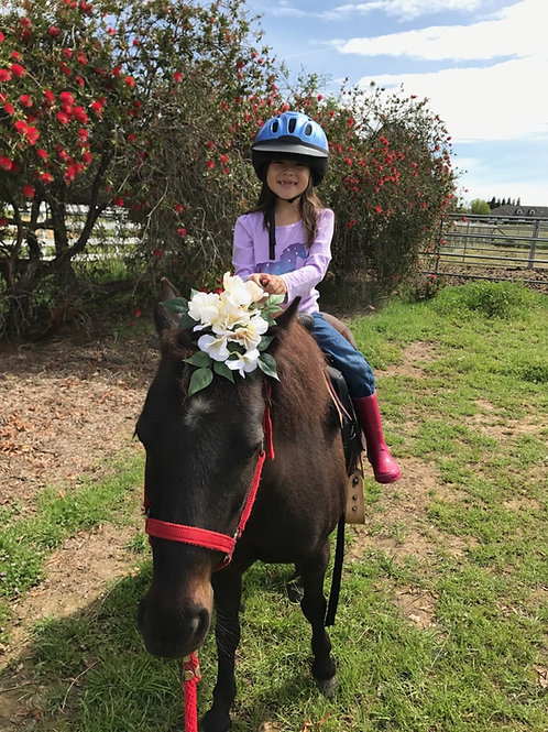 Pony Ride PARTY