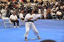 Kenshi Kicking