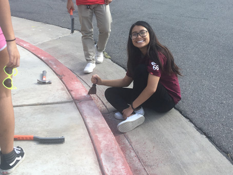 CENTERSTONE WESTBRIDGE RED CURB PAINTING PROJECT ! !