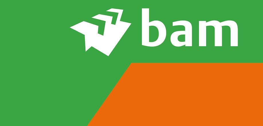 Bam Logo 3.jpg