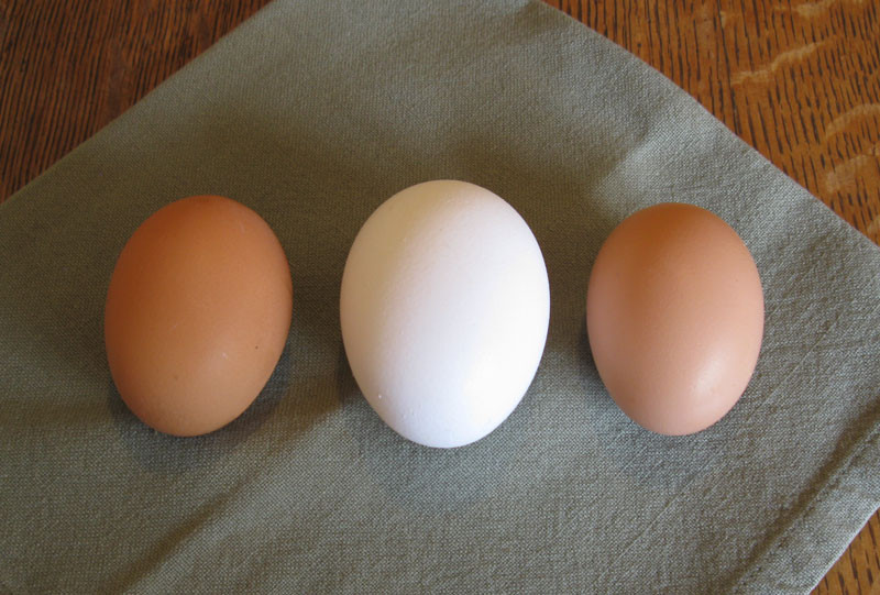 two pullet eggs and one jumbo